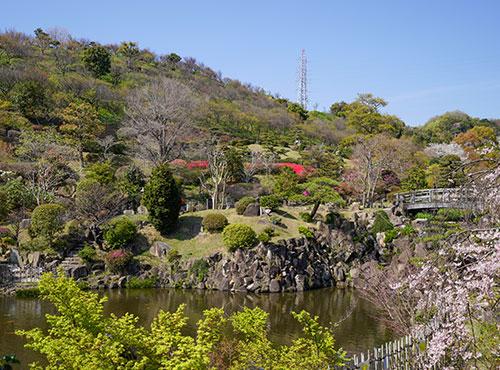 日本庭園・修景池
