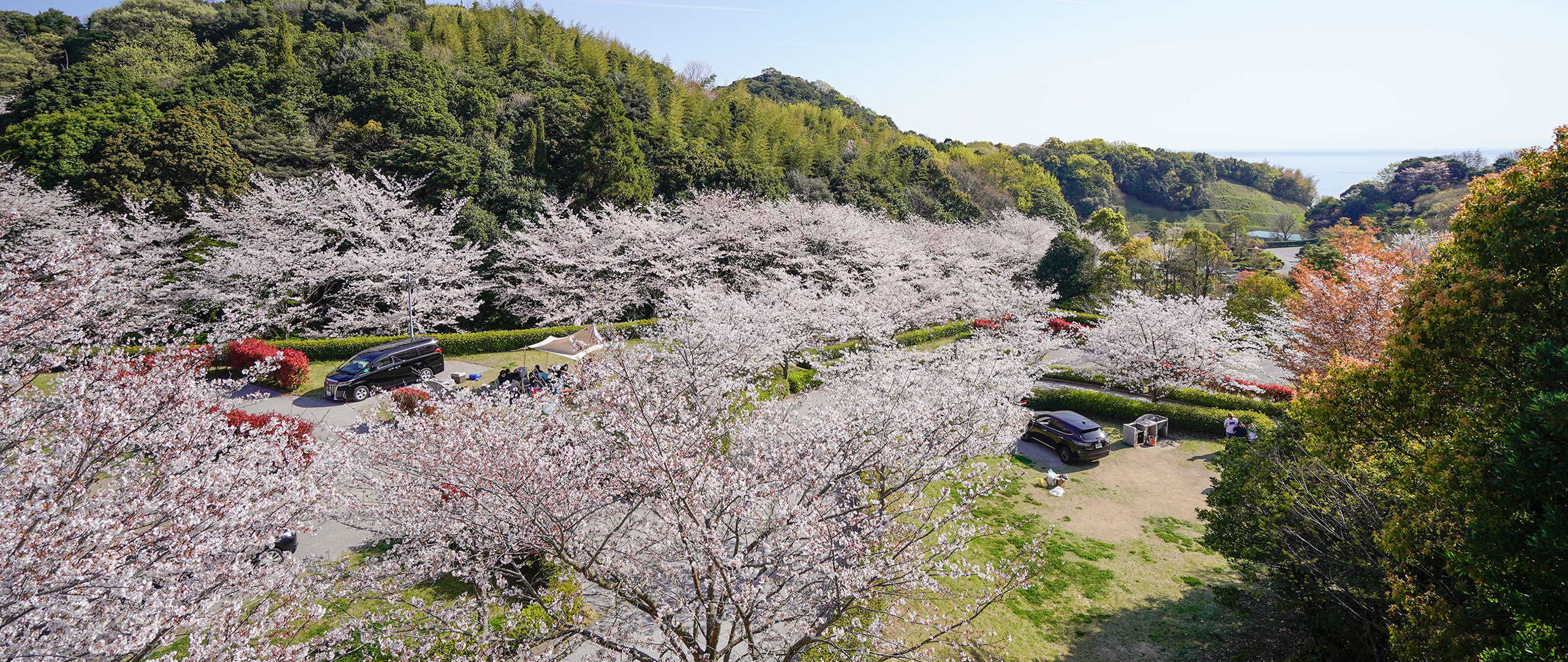 冠山総合公園 トップ画像